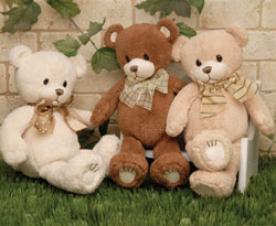 Cuddly Teddy Bear in Fife WA, Fife Flowers & Gifts