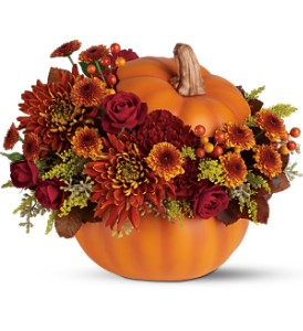 Teleflora's Prize Pumpkin Bouquet in Bloomington IL, Beck's Family Florist