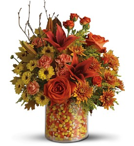 Teleflora's Candy Corn Surprise Bouquet - Deluxe in Grass Lake MI, Designs By Judy