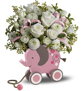 MiGi's Baby Elephant Bouquet by Teleflora - Pink in Lockport NY, Gould's Flowers, Inc.