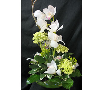 Centerpiece w/Orchids in Tampa FL, Buds, Blooms & Beyond
