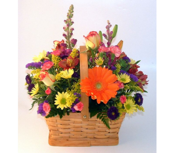 Brighten Your Day in Salisbury MD, Kitty's Flowers