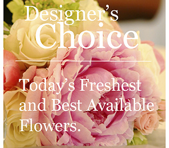 Designer's Choice in Concord NH, D. McLeod Inc.