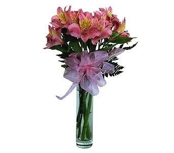 Alstromeria in Clear Glass Bud Local and Nationwide Guaranteed Delivery - GoFlorist.com