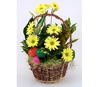 Easter Dishgarden in Indianapolis IN, Gillespie Florists
