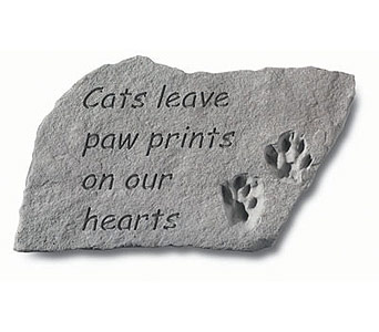 Cats Paw Prints in Indianapolis IN, McNamara Florist