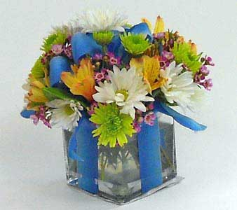 Gift Wrapped Bouquet in Royersford PA, Three Peas In A Pod Florist
