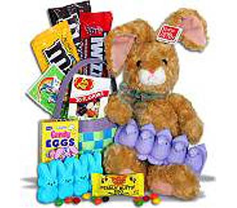 Easter Snack Basket for Two in Birmingham AL, Norton's Florist