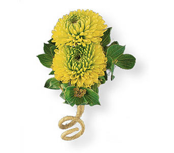Chartreuse Button Boutonniere in Coplay PA, The Garden of Eden