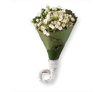Rolled Gypsophila Boutonniere in Coplay PA, The Garden of Eden
