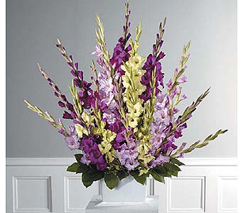Traditional Gladiolus Fan Spray in West Bloomfield MI, Happiness is...Flowers & Gifts