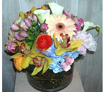Maxi in Dallas TX, Petals & Stems Florist