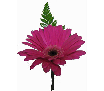 Hot Pink Miniature Gerbera Boutonniere in Wyoming MI, Wyoming Stuyvesant Floral