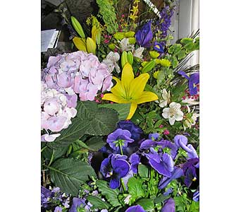 Pleasing Pastels in Bismarck ND, Dutch Mill Florist, Inc.