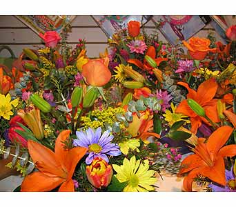 Hot Hot Hot!!! in Bismarck ND, Dutch Mill Florist, Inc.
