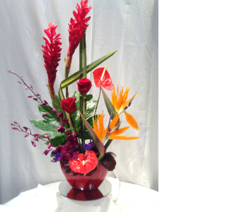 Tropical Passion Design in Houston TX, Clear Lake Flowers & Gifts