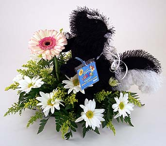 Skunk in Indianapolis IN, Gillespie Florists