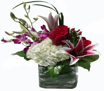 Paris in Scranton PA, McCarthy Flower Shop<br>of Scranton