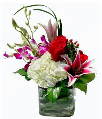 Paris in Newport News VA, Pollards Florist