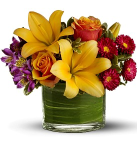 Teleflora's Blossoms of Joy by Petals & Stems in Dallas TX, Petals & Stems Florist