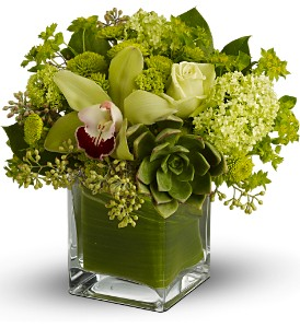 Teleflora's Rainforest Bouquet in Arlington VA, Twin Towers Florist