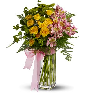 Teleflora's Fresh and Fragrant in Campbell CA, Jeannettes Flowers