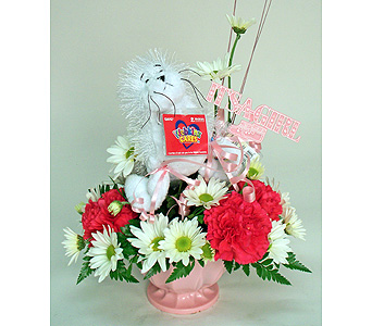 Webkinz Cares Seal for a Baby Girl in Indianapolis IN, Gillespie Florists