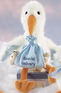 Beary Special Delivery (Blue) in Perrysburg & Toledo OH  OH, Ken's Flower Shops