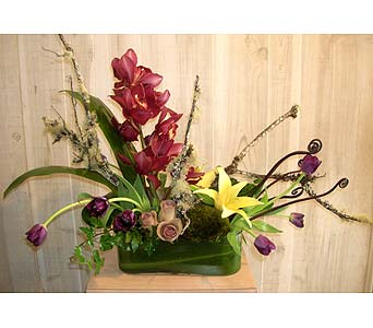 Silver Shadow in Dallas TX, Petals & Stems Florist