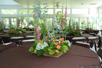 Wildflower Centerpieces in Knoxville TN, The Flower Pot