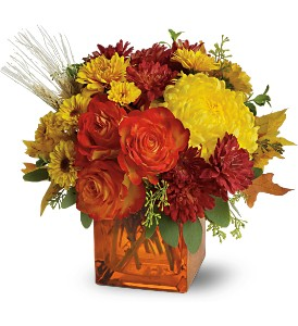 Teleflora's Autumn Expression in Utica NY, Chester's Flower Shop And Greenhouses