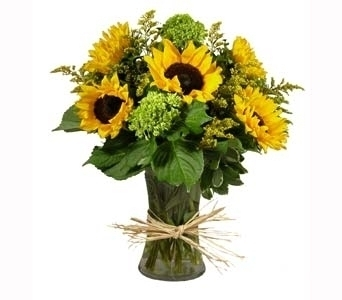 Simply Sunflowers in Stuart FL, Harbour Bay Florist