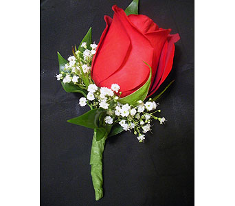 Classic Red Rose Boutonniere in Detroit and St. Clair Shores MI, Conner Park Florist