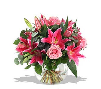 Super Star Pink in Fairfield CT, Glen Terrace Flowers and Gifts