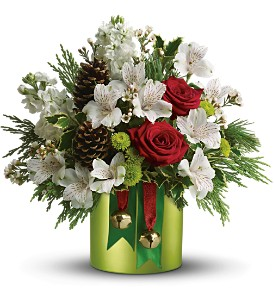 Teleflora's Jolly Jingle in Jamesburg NJ, Sweet William & Thyme