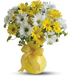 Teleflora's Upsy Daisy in Ellicott City MD, The Flower Basket, Ltd