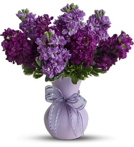 Teleflora's Visions of Violet in Imperial Beach CA, Amor Flowers