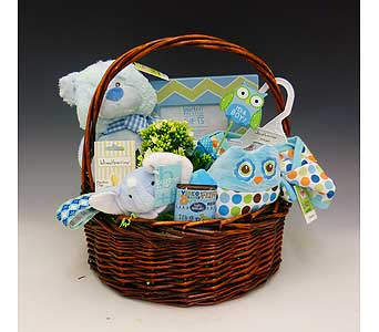 Baby Boy Basket in Kirkland WA, Fena Flowers, Inc.