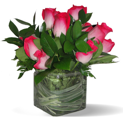 Posies of Roses: Blush in Scranton PA, McCarthy Flower Shop<br>of Scranton