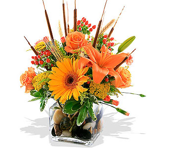 Splash of Autumn Bouquet in St. Louis MO, Walter Knoll Florist