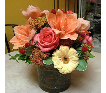 Blush in Massapequa Park NY, Bayview Florist & Montage  1-800-800-7304