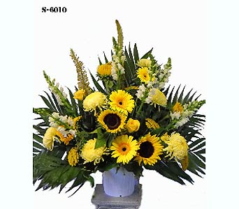 You Are My Sunshine in Norwalk CT, Bruce's Flowers & Greenhouses
