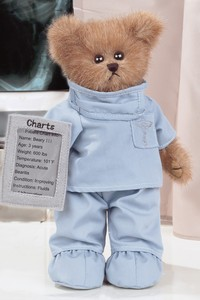 Bearington Bear - Dr. Teddy in Chicago IL, The Flower Cottage