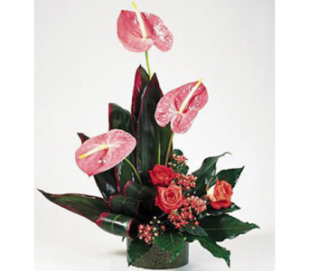 High-Style Tropical Beauty in New York NY, CitiFloral Inc.