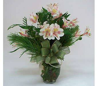 Winter Blooms in Indianapolis IN, Gillespie Florists
