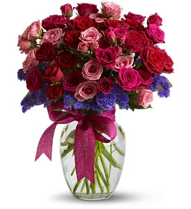 Fabulous Flirt in Summit & Cranford NJ, Rekemeier's Flower Shops, Inc.