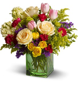 Teleflora's Springtime Harmony in Baltimore MD, Raimondi's Flowers & Fruit Baskets