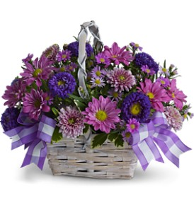 Daisy Day Dreams in Mooresville NC, All Occasions Florist & Boutique