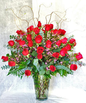 Premium Three Dozen Roses in Newport News VA, Pollards Florist