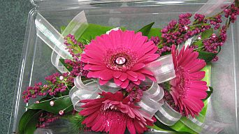 Pink Gerbera Wrist Corsage in Guelph ON, Patti's Flower Boutique